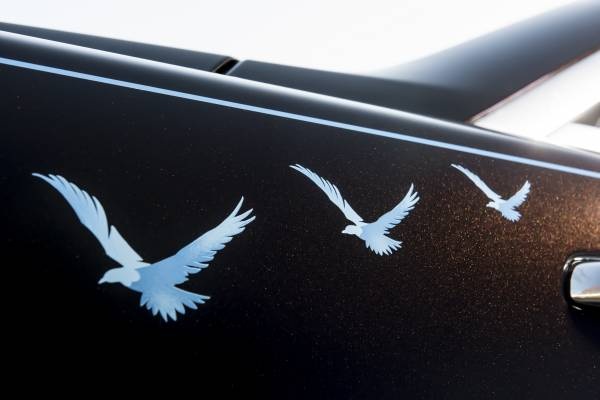 The Tommy Car Birds