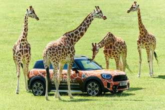 MINI announces roar-some new partnership with Longleat.