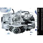 BMW, Dynamic Performance Control (03/2007)