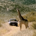The BMW X5 Adventure Trip Namibia.
