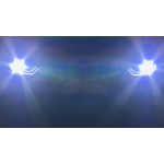 BMW Laserlight and BMW Selective Beam (Glarefree High Beam Assistant).