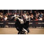 BMW Motorrad Days 2015: Chris Pfeiffer